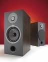 FOCAL CHORA 806 Review – Slate Great