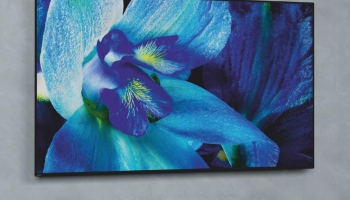 Sony A8G OLED Review