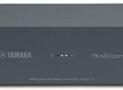 Yamaha WX AD-10 Review